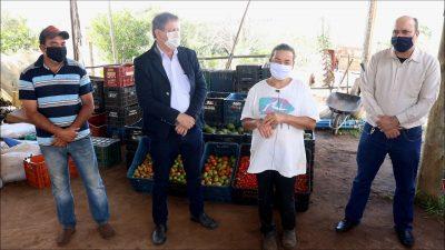 Produtos orgânicos chegam às entidades beneficentes de Itapeva