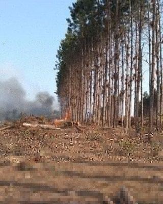 Incêndio de grandes proporções é registrado no Bairro da Várzea