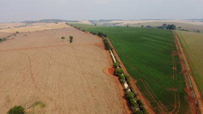Itapeva está entre os 25 municípios mais ricos em Agricultura do país e em primeiro do Estado, segundo o IBGE