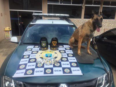 Guarda Municipal apreende drogas na São Benedito